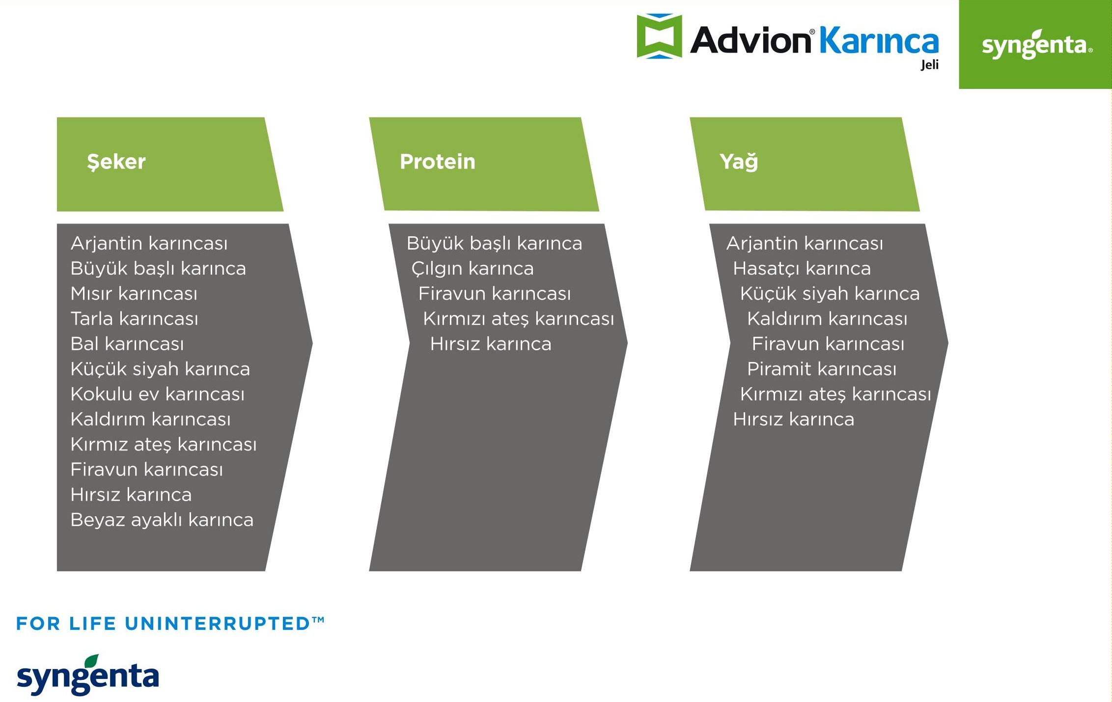 advion_karinca_3